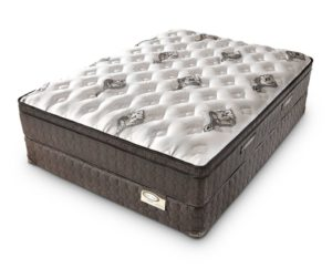 Doctor's Choice® Euro Top Mattress
